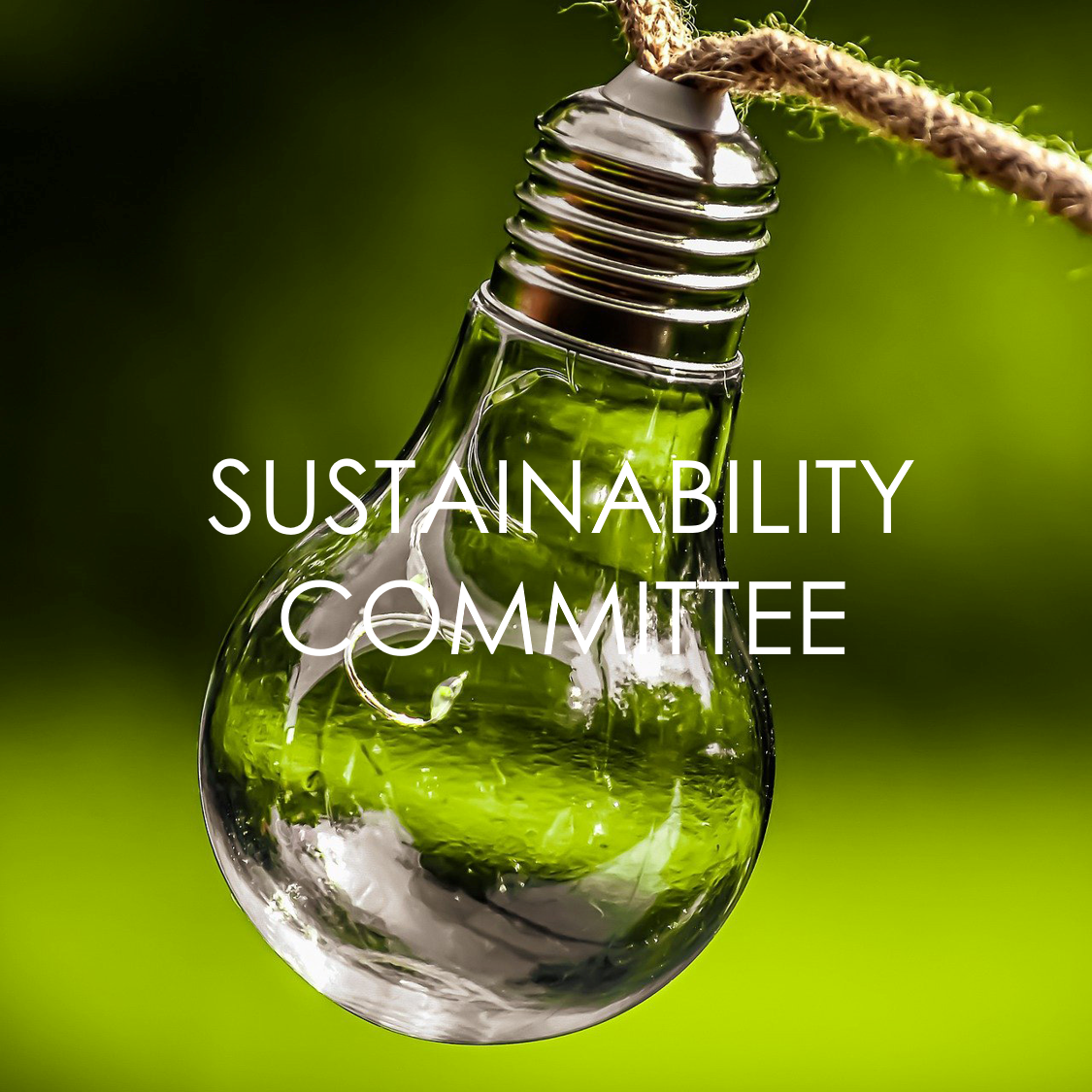 Sustainability1